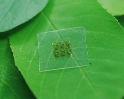 CNF-chip made of wood